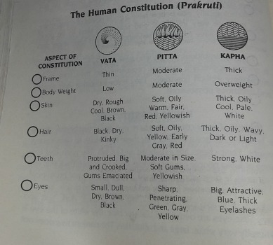 TheHumanConstitution1